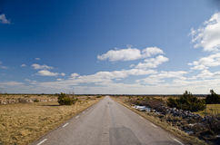 Road. Across the world heritage the great plains in Oland, Sweden Stock Photo