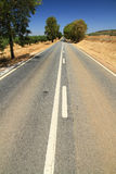 Road. Country road of Alentejo, Portugal royalty free stock photo