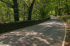 Road. A road through the forest, Wales, UK stock photo