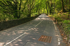 Road. A road through the forest, Wales, UK stock photography