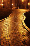 Road. The downtown road in the night Royalty Free Stock Photography