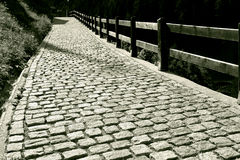 Road. Cobblestone path on the country side, Switzerland Royalty Free Stock Photography