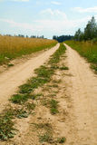 Road. Country road on edge of a wheaten field Stock Photo