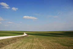 Road. A road under the blue sky on the grass Stock Image