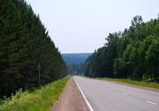 Road. In the middle of forest, Russia Royalty Free Stock Photos