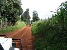 On the road. In Africa Royalty Free Stock Image