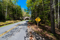 Road in Acadia National Park Maine Stock Photos