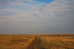 Road across the field Royalty Free Stock Photos