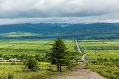 Road across meadow on the background mountains and cloudy sky. The tree near the road across meadow on the background mountains and cloudy sky Royalty Free Stock Image
