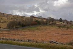 Road Across the Moor Royalty Free Stock Photos