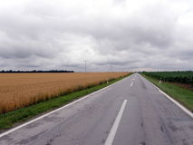Road across wheat fields 2 Royalty Free Stock Images