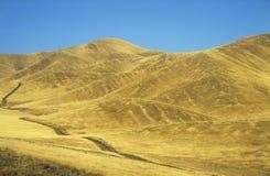 Road across yellow hills Stock Photos