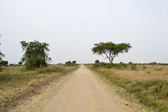 Road in the African savanna. A road in the African savanna Stock Photography