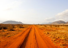 The road through african savanna. In Kenya Royalty Free Stock Photo