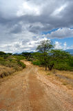 The road in Africa Royalty Free Stock Photo