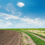 Road in agricultural field and clouds in blue sky Stock Image