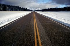 Road ahead. Straight strip of road in winter with trees on the sides Royalty Free Stock Photos