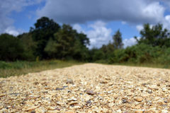 The road ahead. A low shot of a gravel road Stock Photos