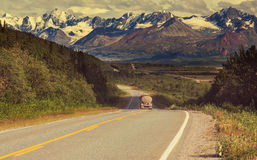 Road on Alaska Royalty Free Stock Images