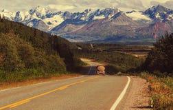 Road on Alaska Stock Image