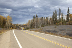 A road in Alberta, Canada. A road cutting through the forest, Alberta, Canada royalty free stock images