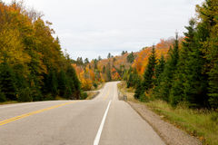 Road through Algonquin Park Royalty Free Stock Photo