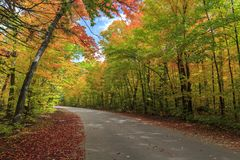 Road through Algonquin Provincial Park in fall royalty free stock images