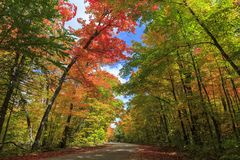 Road through Algonquin Provincial Park in fall stock images