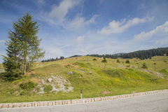 Road along a alpine pastures on Italian Alps Royalty Free Stock Photos
