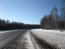 The road along the birch grove. Winter. The road along the birch grove. The black road is laid through a birch grove royalty free stock image