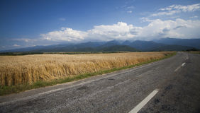 Road along edge of a wheat Stock Photo