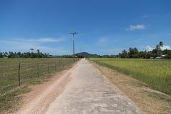 Road along Rice field at Koh Sukorn Island Royalty Free Stock Photo
