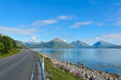 Road along the Tysfjorden in the Lofoten islands royalty free stock photo