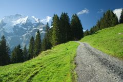 A road in alps. This is a road in Alps to Yungfrau from Lauterbrunnen Royalty Free Stock Photo