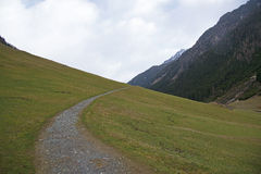 The road in the Alps, Austria. Royalty Free Stock Photos