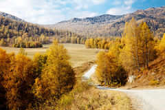 Road among the Altai Mountains. autumn Stock Image