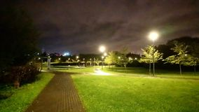 Park night Moscow stock photography