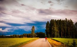 Road Amidst Trees in Forest Against Sky Stock Photography