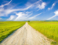 Road Amongst Green Meadow Royalty Free Stock Photography