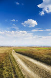 Road amongst spring  meadow Royalty Free Stock Photography