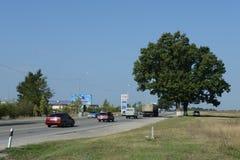 The road from Anapa to port Kavkaz Stock Photography