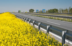 Road And Canola Field Stock Images