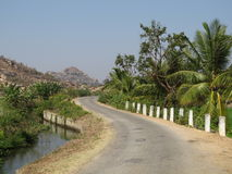 Road And Coconut Trees Royalty Free Stock Photography