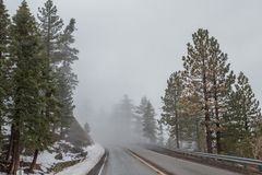 Road In Angeles Crest NationalForest. 