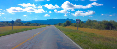 Road. Argentina cordoba flower mountain road sierras street travel white yellow Royalty Free Stock Photo