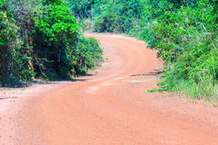 Road in Asian forest Stock Photos