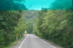 Road. The asphalted road goes to a distance in the rainforest Stock Photography