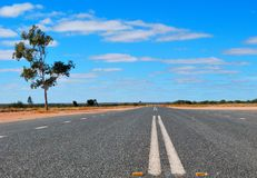 Road in the australian bush. A road in the australian bush Stock Images