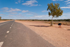 Road in the Australian outback Stock Images