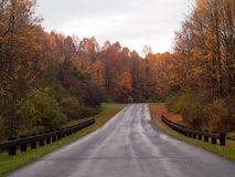 Road in autumn Royalty Free Stock Images